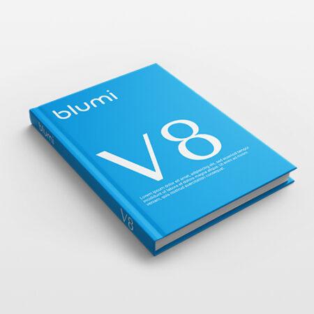 Kniha V8